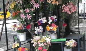 Flower kiosk
